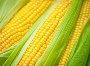 7 loại thức ăn phù hợp cho người gan nhiễm mỡ là: 1