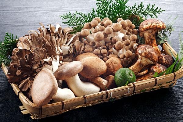thực phẩm tăng cường sức đề kháng và hệ miễn dịch